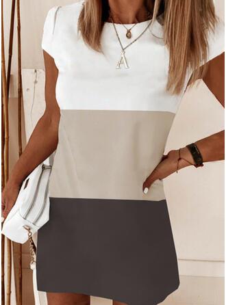 Color Block Short Sleeves Shift Above Knee Elegant Dresses